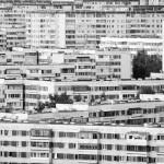 Здания-239