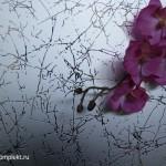 Зеркало-SMC-005-серебро