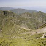 Панорама-617